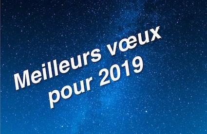 Inscription sur un fond de ciel étoilé : Meilleurs voeux pour 2019.